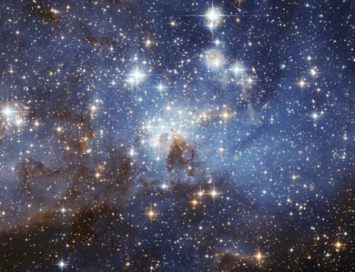 Somos polvo de estrellas y nacimos para brillar